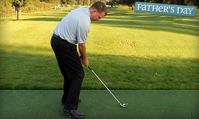 Lance Johnson Golf Academy - Escalon: $39 for One-Hour Private Golf Lesson and Range Balls from Lance Johnson PGA Golf Instruction ($80.50 Value)