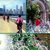 47% Off Bike Tours from Bobby's Bike Hike
