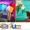 EcoTarium Museum of Science and Nature - Hamilton: $6 General Admission Ticket to EcoTarium Museum of Science and Nature (Up to a $12 Value)