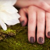 Up to 68% Off Mani-Pedi with Shellac