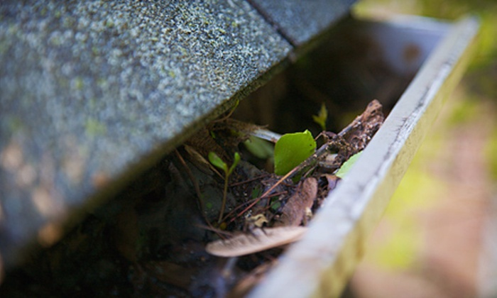 Mandrell's Pressure Cleaning - Gainesville: Gutter Cleaning from Mandrell's Pressure Cleaning (Up to 64% Off). Three Options Available.