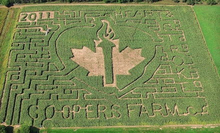 Cooper's CSA Farm and Maze - Cooper's CSA Farm and Maze in Zephyr