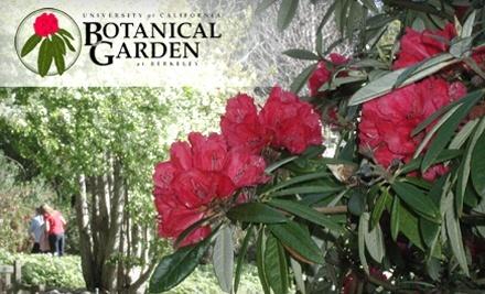 UC Botanical Garden at Berkeley: Family Membership - UC Botanical Garden at Berkeley in Berkeley