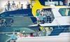 Volvo Ocean Race - Downtown Miami: $350 for a VIP Spectator-Yacht Charter to Volvo Ocean Race International Sailing Race on May 19 or 20 ($700 Value)