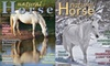 """""""Natural Horse Magazine"""" - Lexington: $16 for a One-Year Print and Online Subscription to """"Natural Horse Magazine"""""""