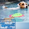 SpawZ Dog - North College Park: $15 for a 30-Minute Dog Swim at SpawZ Dog ($35 Value)