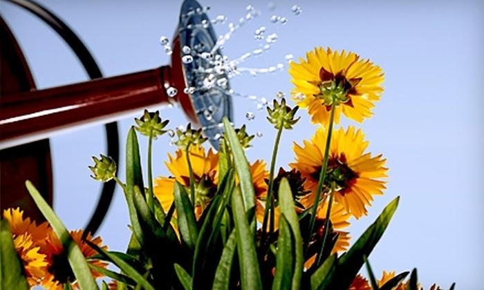 10 For Plants From Missouri Wildflowers Nursery