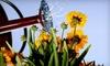Missouri Wildflowers Nursery - Multiple Locations: $10 for $20 Worth of Plants from Missouri Wildflowers Nursery