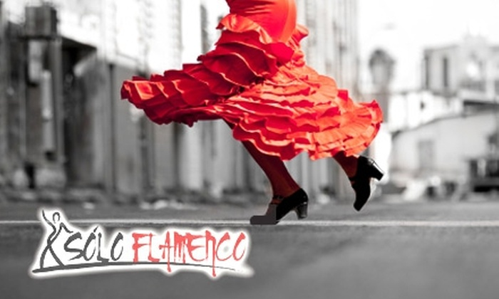 Solo Flamenco Arts Academy - Hosford - Abernethy: $12 for Three Classes at Solo Flamenco Arts Academy