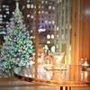 Up to 50% Off NYC Tree Lighting Gala at 45 Rockefeller Center