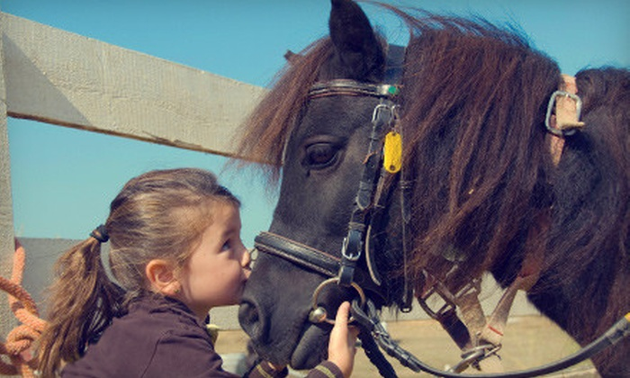 Hearts Desire Ranch - Manteca: $29 for Two One-Hour Private Horseback Riding Lessons at Hearts Desire Ranch in Manteca ($60 Value)