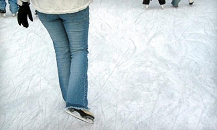 Jacksonville Ice & Sportsplex -  Jacksonville: Skating Session or Week of Basic Skills Camp at Jacksonville Ice & Sportsplex