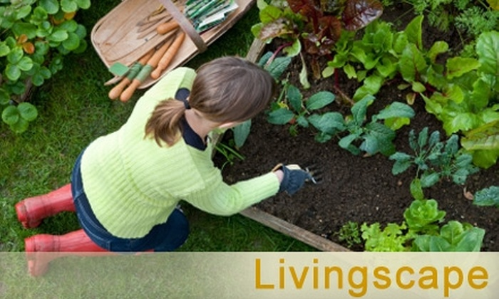 Livingscape - Boise: $10 for $25 Worth of Plants, Outdoor Accessories, Kitchen Items, and Classes at Livingscape