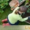 $10 for Garden Supplies at Livingscape