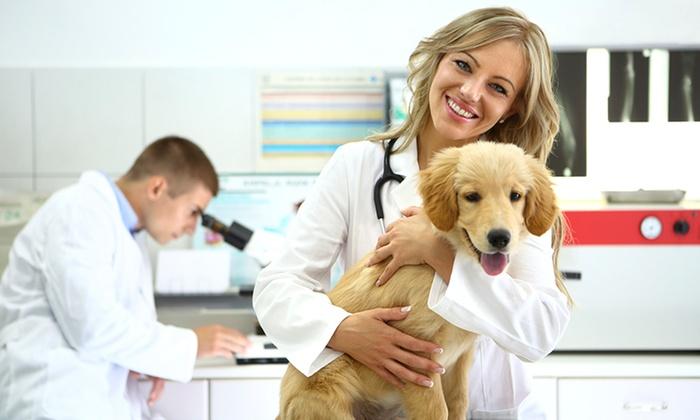 Veterinary Care Group - Douglaston Little Neck: $49 for $109 Worth of Veterinary Services — Veterinary Care Group