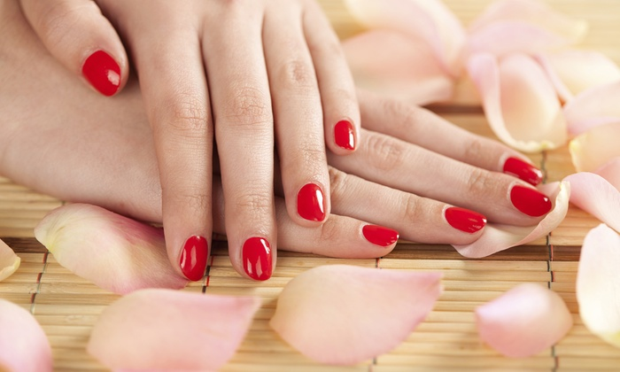 Sofia at Exquisite Salon - Exquisite Salon and Spa: One, Two, or Three Shellac Manicures with One Pedicure from Sofia at Exquisite Salon (Up to 51% Off)