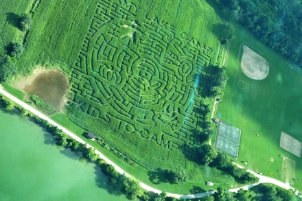 Corn-Maze Adventures for Two, Four, or Six at Army Lake Camp (Up to 58% Off)