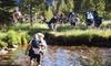 46% Off 75-Mile Guided Sierra Hike