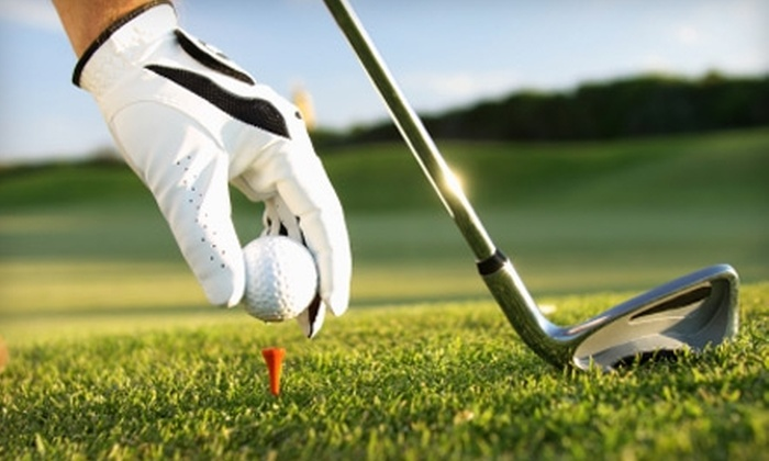 Golf Connection USA: $49 for a GolfOne Rewards Membership from Golf Connection USA ($99 Value)