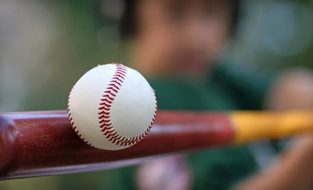 1-Hour Batting-Cage Rental (a $38 value) - 3D Sports in Yorktown