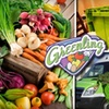 Half Off Greenling Grocery Delivery