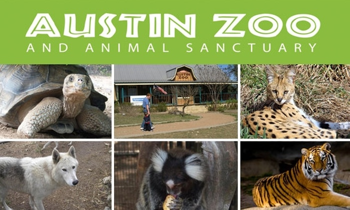 Austin Zoo - Austin: One-Year Membership to the Austin Zoo and Animal Sanctuary