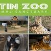 Half Off Austin Zoo Membership