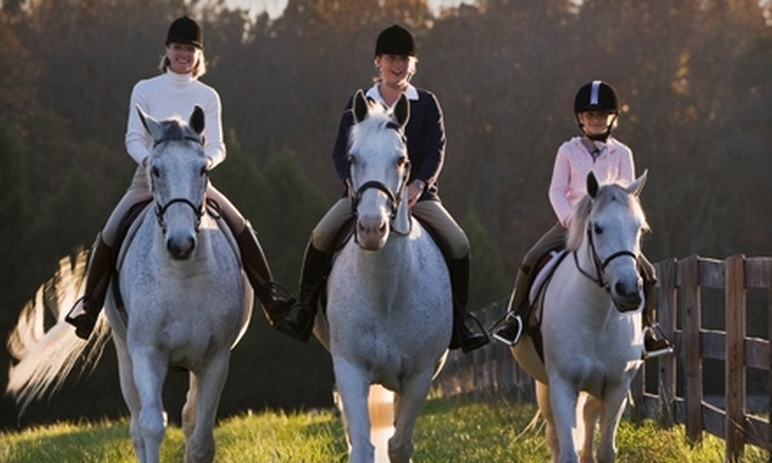 Fox Meadow Farms - Naperville: $22 for a One-Hour Group Horseback-Riding Lesson at Fox Meadow Farms in Naperville ($45 Value)