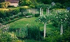 Old City Cemetery Museums and Arboretum - Roanoke: $35 for Two to Eudora Welty Garden Symposium on Wednesday, March 21, in Lynchburg ($70 Value)