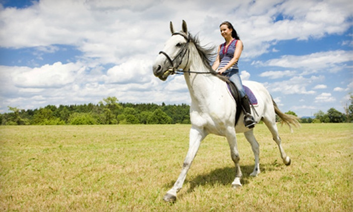 Horse Rides of Pensacola - West Pensacola: One-Hour Trail Ride or 30-Minute Riding Lesson and 30-Minute Trail Ride or Three One-Hour Lessons at Horse Rides of Pensacola (Up to 53% Off)
