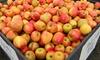 Foley's Produce - Hobart: Seasonal Fruits and Vegetables at Foley's Produce (50% Off)
