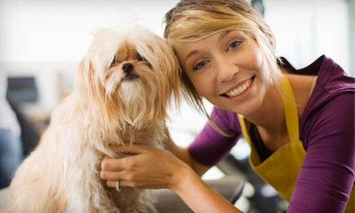 Animal Lodge - Amarillo: $15 for $30 Worth of Grooming Services at the Animal Lodge