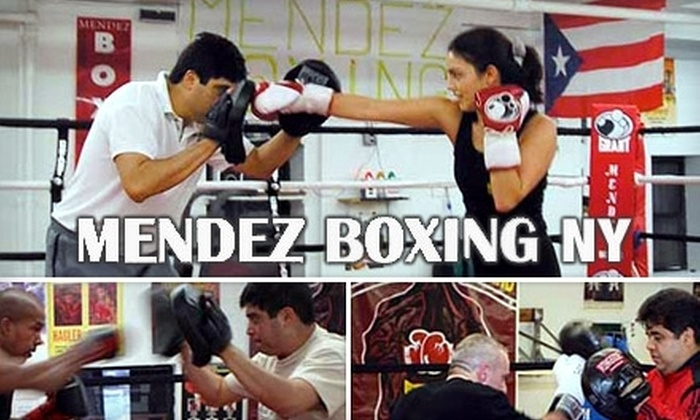 Mendez Boxing - Midtown South Central: $48 for Four Individualized 60-Minute Boxing Lessons at Mendez Boxing ($100 Value)