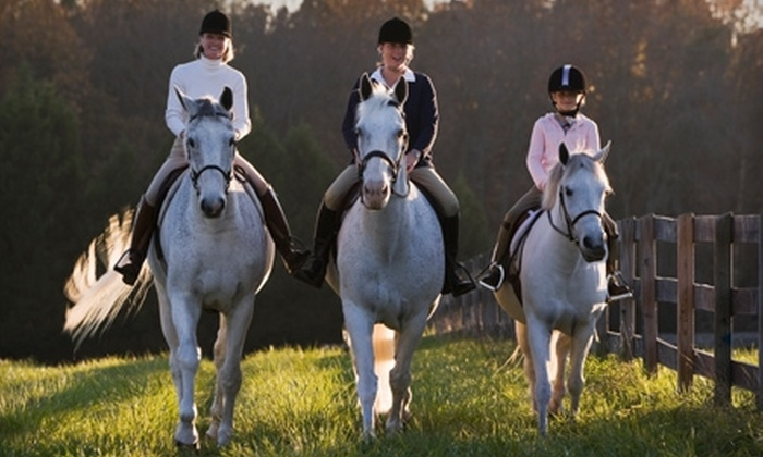 August Farm - Southeast Montgomery: $45 for Two Private Horseback-Riding Lessons at August Farm in Magnolia ($90 Value)