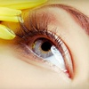 Up to 78% Off Eyelash Extensions