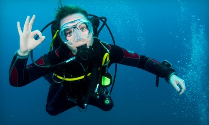 Scuba Lessons Inc. - Multiple Locations: Scuba Session at Scuba Lessons Inc. Two Options Available.