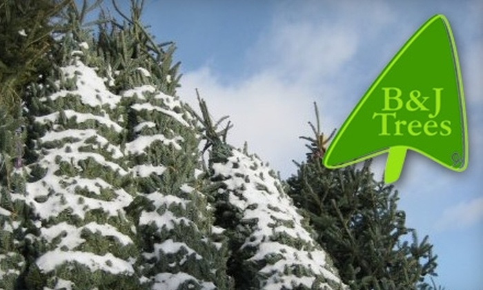 B&J Trees - Multiple Locations: $10 for a Fraser Fir Christmas Wreath at B & J Trees ($20 Value)