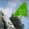 Half Off Christmas Wreath at B & J Trees