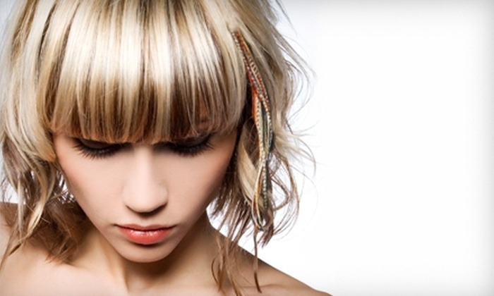 Salon E-Clips - Gladstone: $25 for One Feather Hair Extension at Salon E-Clips ($50 Value)