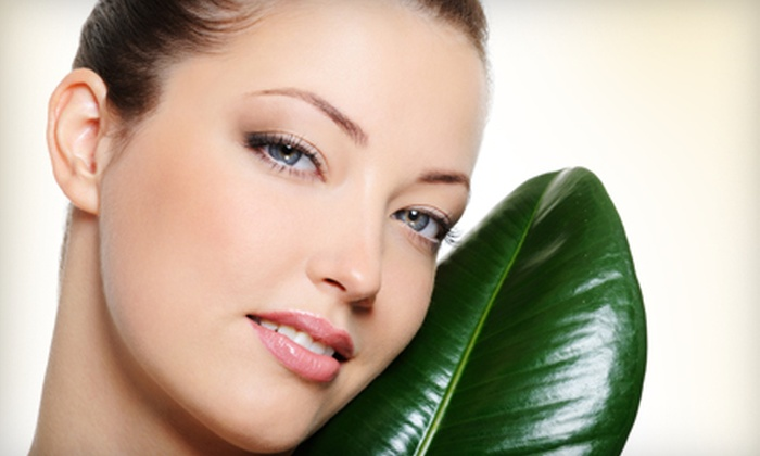 Beauty Regime - The Transit Center: Rejuvenating Facial Lift Treatments at Beauty Regime in Troy. Two Options Available.
