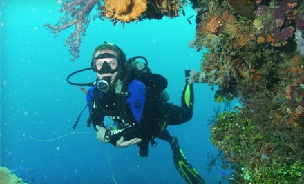 1-Hour Intro to Scuba Class (a $60 value) - Innerspace Watersports in Kelowna