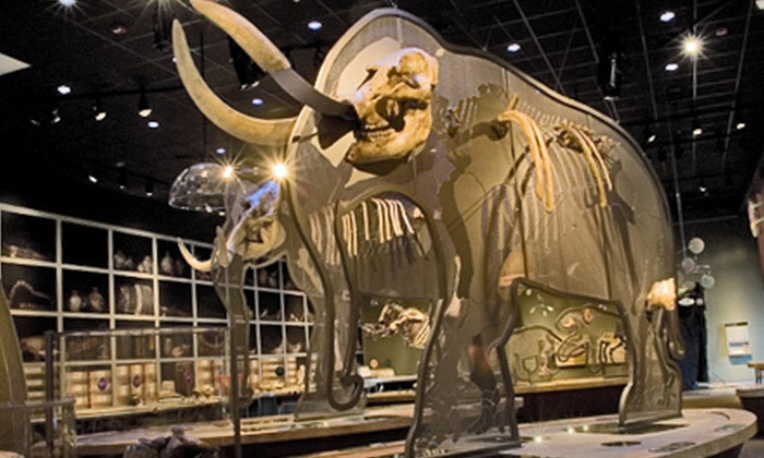 Western Science Center - Hemet: Museum Day for Two Children or Two Adults at the Western Science Center in Hemet (Half Off)