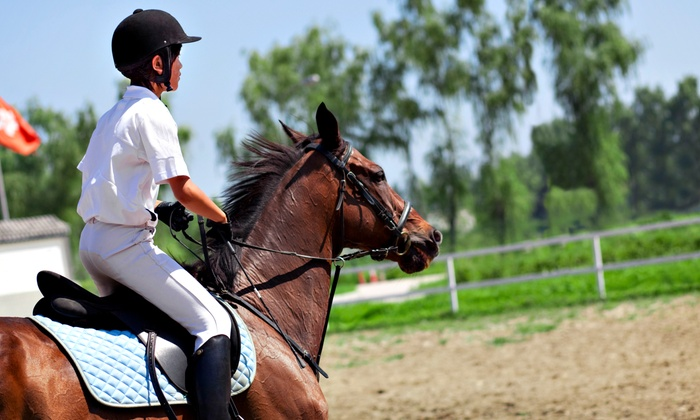Hillside Meadows Equestrian Center - Grafton: Two or Four 30-Minute Private Horseback-Riding Lessons at Hillside Meadows (Up to 55% Off)