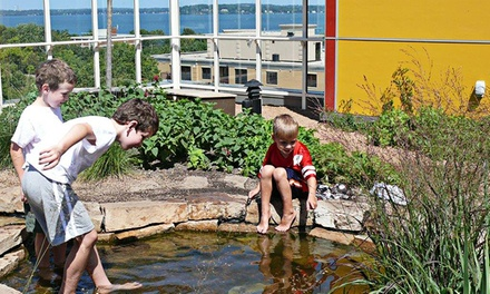 Admission for Four to Madison Children's Museum (Up to 53% Off)