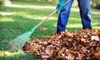 Up to Half Off Leaf Removal from Techno-Turf