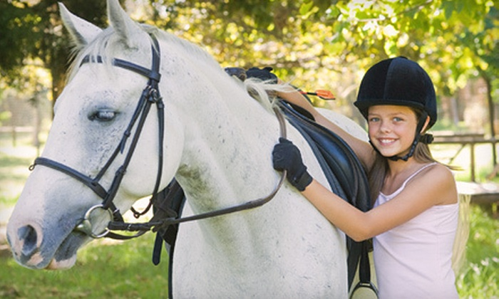Lucky Stables LLC - Neenah: $39 for Two 60-Minute Private Horseback-Riding Lessons at Lucky Stables LLC in Neenah ($80 Value)