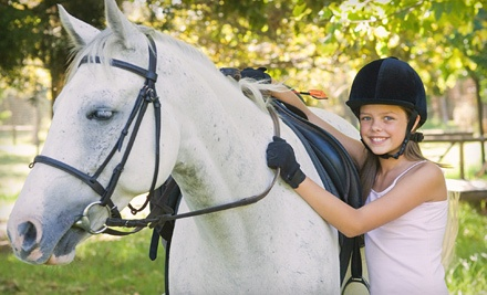 Lucky Stables LLC - Lucky Stables LLC in Neenah