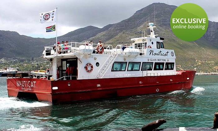 Nauticat Charters - Nauticat Charters: Seal Island Trip on a Glass-Bottom Boat from R80 with Nauticat Charters