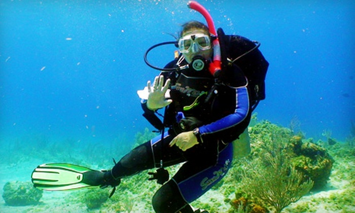 Phoenix Scuba and Water Sports - Lackawanna: $25 for a Discover Scuba Class at Phoenix Scuba and Water Sports in Lackawanna ($50 Value)