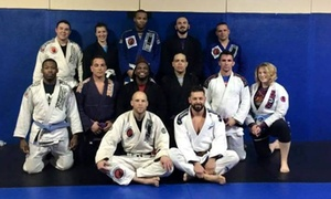 Nemesis Jiu Jitsu: $131 for $375 Worth of Martial-Arts Lessons — Nemesis Jiu Jitsu